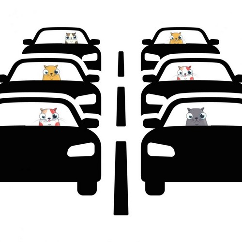 The Ethereum Blockchain is Congested by Cats