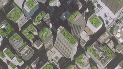 green roofs 10pkg transfer frame 360 Green Roof Initiative Shows Unintended Consequences