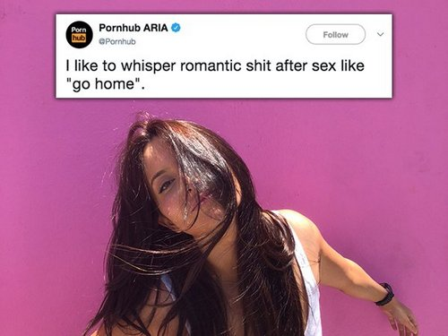 Pornhub's raunchy tweets are riding on top (30 Photos)
