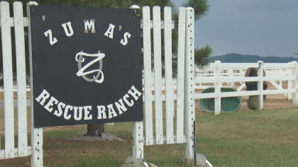 Rescue Ranch Saves Horses, Horses Save People