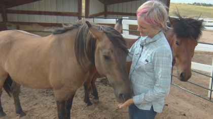 zumas rescue 2 Rescue Ranch Saves Horses, Horses Save People