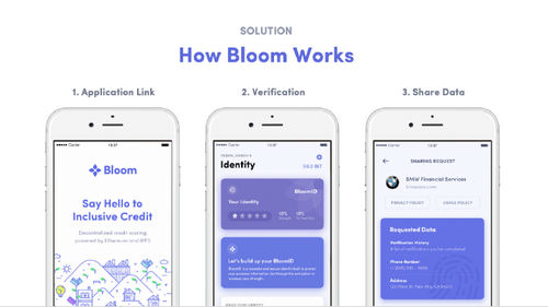 How Bloom Works