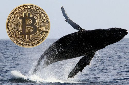 Bitcoin (BTC) Whales Making a Splash: Did 9 Transactions Valued at $236m Spark the Market?