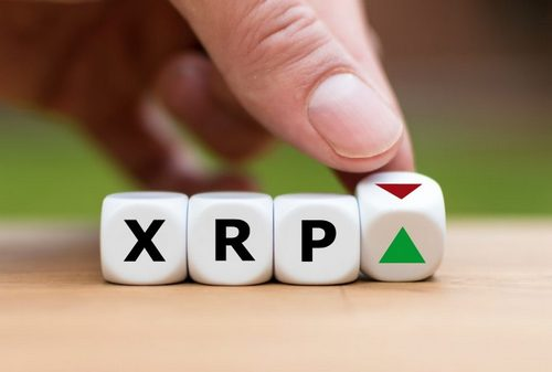 Lawsuit Against Ripple May Decide the Fate of XRP but Regulators Have the Final Say